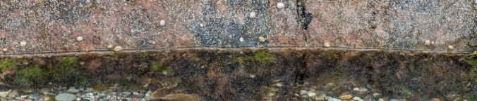 Sealines of Iona 4