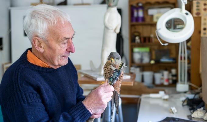 Eddie Hallam – MasterSculptor